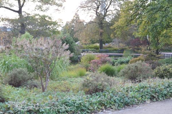 18/365: A Walk in a Park