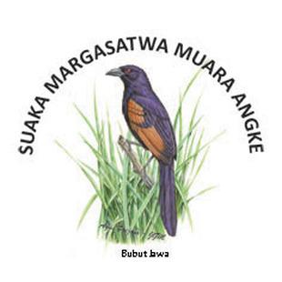 Birdwatching at Suaka Margasatwa Muara Angke